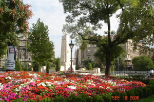 A Pest Square
