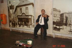 A Budapest Musician