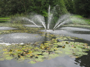 Fountain on the lily pond in Melbourne's Royal Botanic Gardens