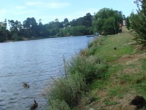 Daylesford Lake