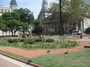 A peaceful corner of Plaza de Mayo