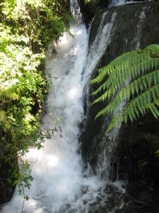 Te Wairoa Waterfall