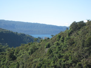 A view of Tarawera today