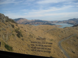 View of the Port hills from the Gondola