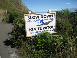 A caution to commuters on Wellington's southern coast road.